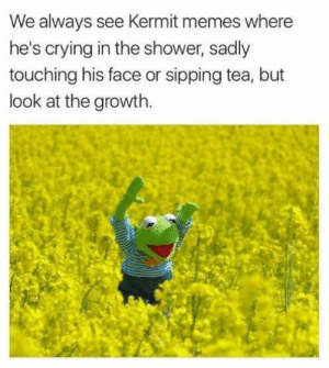 Crying, Memes, and Shower: We always see Kermit memes where  he's crying in the shower, sadly  touching his face or sipping tea, but  look at the growth Happy Kermit
