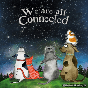 Memes, 🤖, and All: We are all  Connecfed  @RedandHowling