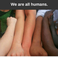 Memes, 🤖, and All: We are all humans.