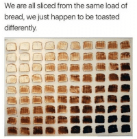 """We are all sliced from the same load of  bread, we just happen to be toasted  differently. I'm not posting this for the message but wtf is up with """"load"""" of bread. It's a loaf"""