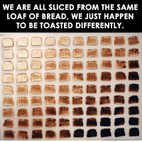 One way to look at it.: WE ARE ALL SLICED FROM THE SAME  LOAF OF BREAD, WE JUST HAPPEN  TO BE TOASTED DIFFERENTLY. One way to look at it.
