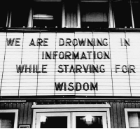 Memes, 🤖, and Down: WE ARE DROWNING  INFORMATION  WHHLE STARVING FOR 1.) Sit down. 2.) Read a book with an open mind 3.) Then get out into the world and experience life.