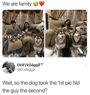 Dank, Family, and Memes: We are family  @D_dagga  Wait, so the dog took the 1st pic Nd  the guy the second? the dog ate my camera by arpan8 MORE MEMES