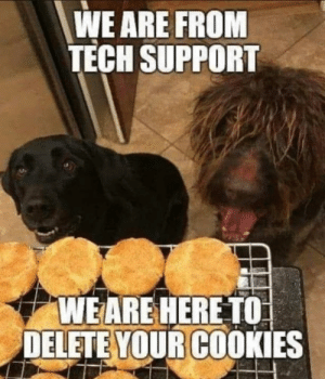 Tech Support: WE ARE FROM  TECH SUPPORT  WEARE HERE TO  DELETE YOUR COOKIES