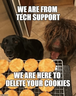 Funny Animal Meme Dump 23 Pics: WE ARE FROM  TECH SUPPORT  WEARE HERETO  DELETE YOUR COOKIES  com Funny Animal Meme Dump 23 Pics