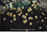 lost souls: We are just lost souls, aren't we?