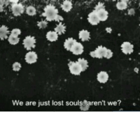 lost souls: We are just lost souls aren't we?e