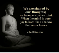 pure joy: We are shaped by  our thoughts;  we become what we think.  When the mind is pure  joy follows like a shadow  that never leaves  e-buddhism com