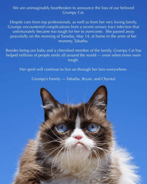 Me_irl: We are unimaginably heartbroken to announce the loss of our beloved  Grumpy Cat.  Despite care from top professionals, as well as from her very loving family,  Grumpy encountered complications from a recent urinary tract infection that  unfortunately became too tough for her to overcome. She passed away  mommy, Tabatha.  Besides being our baby and a cherished member of the family, Grumpy Cat has  helped millions of people smile all around the world _even when times were  tough.  Her spirit will continue to live on through her fans everywhere.  Grumpy's Family  Tabatha, Bryan, and Chyrstal Me_irl