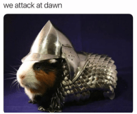 Dawn and Attack: we attack at dawn