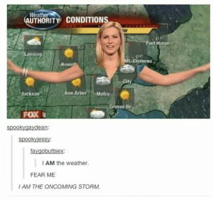 The Weather, Weather, and Fear: We  AUTHORITY CONDITIONS  ort Huron  Lansin  to Clemens  Howe  Jackson  nn ArboreMetro  sse lle  FOX  spookygaydean:  spookyjessy:  faygobuttsex:  I AM the weather.  FEAR ME  I AM THE ONCOMING STORM And now to Julie with the weather!