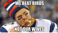 Tom Brady's message to the Ravens: WE BEAT BIRDS  ONFL MEMES  NOT OUR WIVES Tom Brady's message to the Ravens