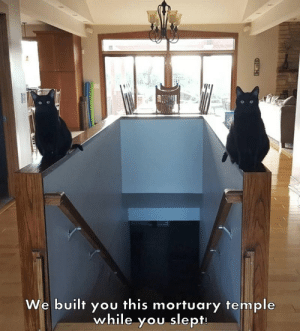 Temple: We built you this mortuary temple  while you slept  HEH