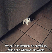 Batman, Him, and Call: We call him Batman, he shows up  when and wherever he wants
