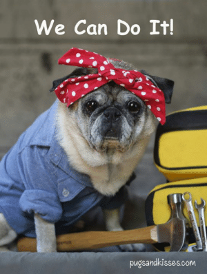 Memes, Rosie, and International Women's Day: We Can Do It  pugsandkisses.com Happy International Women's Day!!!!! WooHoo!!! We can do it!!!💪 xoxo 💗💗💗 ~ Rosie the Riveter A.K.A. Zoe Elizabeth
