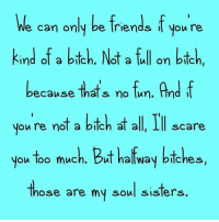 Bitch, Dank, and Friends: We can only be friends f  you re  kind of a bich. Not a full on bitch,  because thats no fun. And f  you're not a bitch at all, Ill scare  you too much. But halfway bitches,  those are my soul sisters