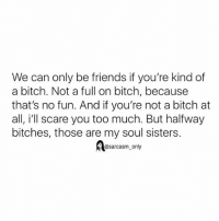 ⠀: We can only be friends if you're kind of  a bitch. Not a full on bitch, because  that's no fun. And if you're not a bitch at  all, i'll scare you too much. But halfway  bitches, those are my soul sisters.  @sarcasm only ⠀