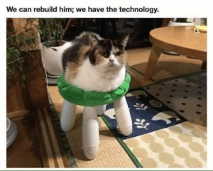 20 Hilarious Funny pictures with captions cant stop laughing: We can rebuild him; we have the technology. 20 Hilarious Funny pictures with captions cant stop laughing