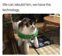 Club, Tumblr, and Blog: We can rebuild him; we have the  technology. laughoutloud-club:  We can make him stronger