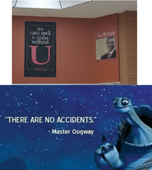"""my school is a meme: we  can't spell  S ccéss  without  YES, WE CAN  """"THERE ARE NO ACCIDENTS.""""  Master Oogway my school is a meme"""