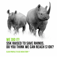 Click, Community, and Memes: WE DID IT!  $5K RAISED TO SAVE RHINOS  DO YOU THINK WE CAN REACH $10K?  CLICK PROFILE TO SEE NEW STORY A We've surpassed our goal of $2,500 for Rhinos Without Borders. We have 2-days left in our fundraiser, and we're challenging ourselves, and the @science community, to help us raise 4x's our initial goal. We're already half-way there. Click on our profile to view our 'Story' and see how your money can make a difference. If you're interested in being part of helping the rhinos get off the endangered species list, go to the link in our description, or click through our 'Story', to purchase the Save the Rhinos charitable poster. Thank you all for making this possible.