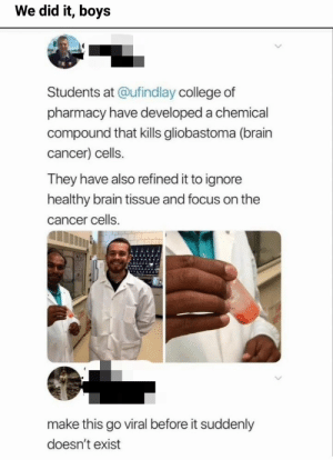[60+] Funny memes compilation 2019 #38 (Awesome) | Memesplus: We did it, boys  Students at @ufind lay college of  pharmacy have developed a chemical  compound that kills gliobastoma (brain  cancer) cells.  They have also refined it to ignore  healthy brain tissue and focus on the  cancer cells  make this go viral before it suddenly  doesn't exist [60+] Funny memes compilation 2019 #38 (Awesome) | Memesplus