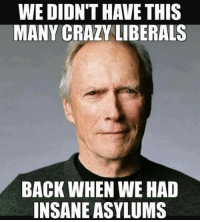 Crazy, Memes, and Back: WE DIDN'T HAVE THIS  MANY CRAZY LIBERALS  BACK WHEN WE HAD  INSANE ASYLUMS