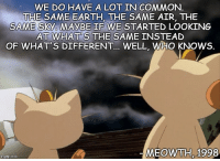I feel you Meowth.: WE DO HAVE A LOT IN COMMON  THE SAME EARTH, THE SAME AIR, THE  SAME Sky MAYBE IF WE STARTED LooKING  AT WHATS THE SAME INSTEAD  OF WHAT S DIFFERENT.  WELL, WHO KNOWS.  MEOWTH, 1998  mgfip.com I feel you Meowth.