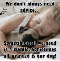 Advice, Memes, and Advice Dog: We don't always need  advice.  Dog  Talks  Sometimes all we need  is a cuddle Sometimes  all we need is our dog!