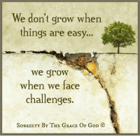 Memes, Easy A, and 🤖: We don't grow when  things are easy  a  we grow  when we face  challenges.  SoBRIETY BY THE GRACE OF GoD CO We don't grow when things are easy, we grow when we face challenges.