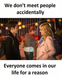 Life, Love, and Memes: We don't meet people  accidentally  Everyone comes in our  life for a reason tag someone Check out all of my prior posts⤵🔝 Positiveresult positive positivequotes positivity life motivation motivational love lovequotes relationship lover hug heart quotes positivequote positivevibes kiss king soulmate girl boy friendship dream adore inspire inspiration couplegoals partner women man