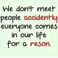 Memes, 🤖, and Resonance: We don't meet  people accidently  everyone comes  in our life  for  reson. Tag Someone <3 <3