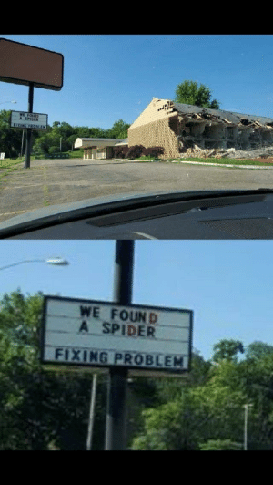 Reddit, Spider, and Problem: WE FOUND  A SPIDER  FIXIG PRODEEH  WE FOUND  A SPIDER  FIXING PROBLEM Perfect execution on their part