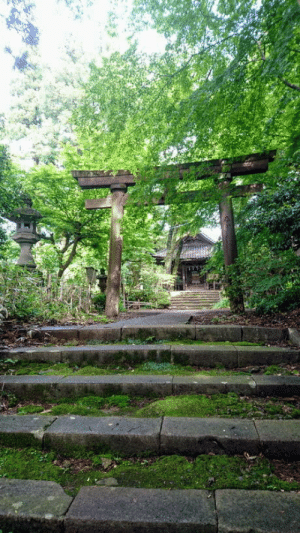 In the Mountains, Abandoned, and The: We found an abandoned temple in the mountains (Japon)