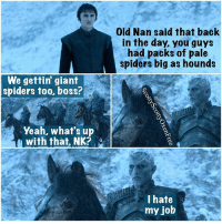 Hbo, Memes, and Spider: We gettin giant  spiders too, boss?  Yeah, what's up  with that, NK?  Old Nan said that back  in the day, you guys  had packs of pale  spiders big as hounds  I hate  my job Taking the spider challenge to GoT heights... gameofthrones got asongoficeandfire asoiaf georgerrmartin grrm hbo gameofthronesmeme gameofthronesmemes savegot northofthewall branstark threeeyedraven oldnan whitewalkers thenightsking nightsking letloosethepalespiders