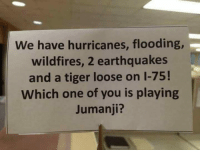 That makes sense: We have hurricanes, flooding  wildfires, 2 earthquakes  and a tiger loose on 1-75!  Which one of you is playing  Jumanji? That makes sense