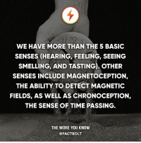 Memes, The More You Know, and Brain: WE HAVE MORE THAN THE 5 BASIC  SENSES (HEARING FEELING, SEEING  SMELLING, AND TASTING), OTHER  SENSES INCLUDE MAGNETOCEPTION  THE ABILITY TO DETECT MAGNETIC  FIELDS, AS WELL AS CHRONOCEPTION,  THE SENSE OF TIME PASSING  THE MORE YOU KNOW  @FACT BOLT Chronoception differs from the other senses, since time is not directly perceived but is mostly reconstructed by the brain.