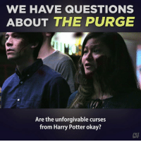 Don't just stand there, go purge! Doesn't that look like fun?: WE HAVE QUESTIONS  ABOUT THE PURGE  Are the unforgivable curses  from Harry Potter okay? Don't just stand there, go purge! Doesn't that look like fun?