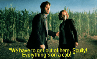 Cob, Get, and Get Out: We have to get out of here, Scully!  Everything's on a Cob