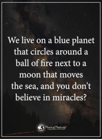 Ball of Fire: We live on a blue planet  that circles around a  ball of fire next to a  moon that moves  the sea, and you don't  believe in miracles?  Pruet