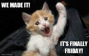 Let the weekend begin!: WE MADE IT!  ITS FINALLY  FRIDAY!  Capioe by Kaywors Let the weekend begin!