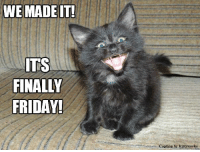 Smiles everyone, smiles!: WE MADE IT!  ITS  FINALLY  FRIDAY!  Caption by Kittyworks Smiles everyone, smiles!