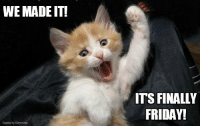 Let the weekend begin!: WE MADE IT!  ITS FINALLY  FRIDAY! Let the weekend begin!