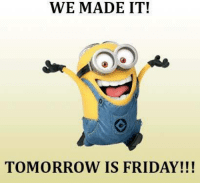 Friday, Memes, and Tomorrow: WE MADE IT!  TOMORROW IS FRIDAY!!!