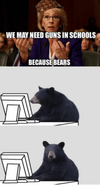 Memes, Raven, and Ravens: WE MAY NEED GUNSINSCHOOLS  BECAUSE BEARS Laugh all you want liberals. Next time there's a ravenous bear attack in a school that blood will be on your hands!