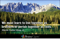 Martin, Martin Luther King Jr., and Memes: We must learn to live together as  brothers or perish together as fools.  Martin Luther King, Jr.  Brainy  Quote We must learn to live together as brothers or perish together as fools. - Martin Luther King, Jr. https://www.brainyquote.com/quotes/quotes/m/martinluth101309.html #brainyquote #QOTD #MLK #mountains
