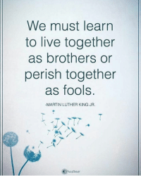 We must learn to live together as brothers or perish together as fools. - Martin Luther King Jr. powerofpositivity: We must learn  to live together  as brothers or  perish together  as fools.  -MARTIN LUTHER KING JR. We must learn to live together as brothers or perish together as fools. - Martin Luther King Jr. powerofpositivity