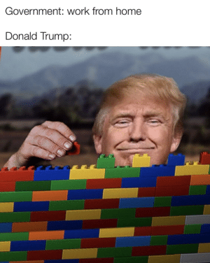 We need to build a wall: We need to build a wall