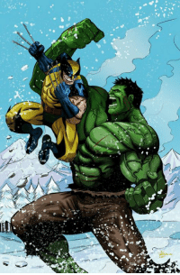 We need Wolverine to fight The Hulk in the Marvel Cinematic Universe!  (Andrew Gifford): We need Wolverine to fight The Hulk in the Marvel Cinematic Universe!  (Andrew Gifford)