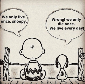 Dont know how accurate this is but it made my day: We only live  once, snoopy.)  Wrong! we only  die once.  We live every day! Dont know how accurate this is but it made my day